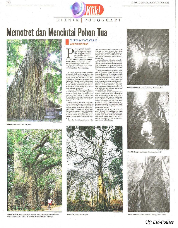 Memotret dan Mencintai Pohon Tua.Kompas.23 September 2014.Hal.36